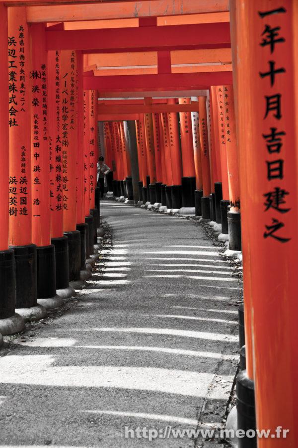 Kyoto - Mata Inari